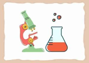 Videos – Aprende en Casa – Ciencia y Tecnología